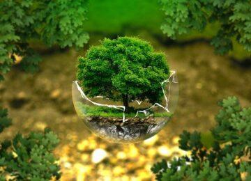 Dlaczego ekologia wciąż Cię nie przekonuje?